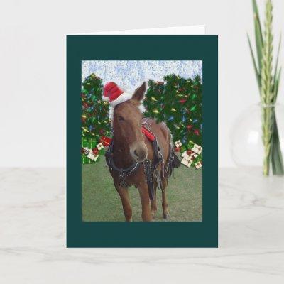 the Italian Christmas Donkey wishes everyone a Merry Christmas