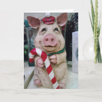 MERRY CHRISTMAS MY LITTLE PIGGY HOLIDAY CARD