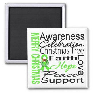 Merry Christmas Non-Hodgkins Lymphoma Ribbon Magnet