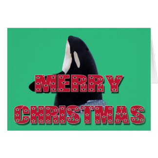 Merry Christmas Orca Whale Spy Hop Christmas Gifts Cards