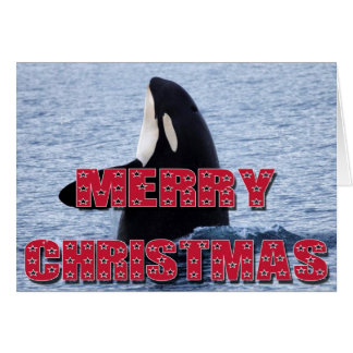 Merry Christmas Orca Whale Spy Hop Holiday Gifts Card