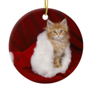 Merry Christmas - ornament