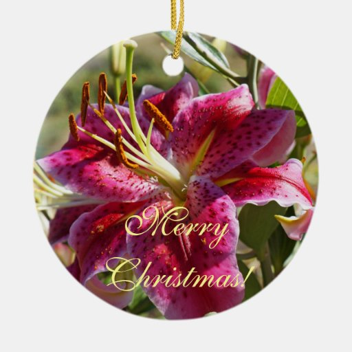 Merry Christmas Ornaments Lots of Love Your Name