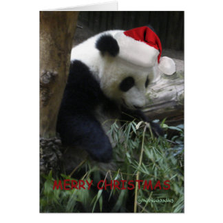 Merry Christmas Panda Happy New Year! Card