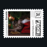 "Merry Christmas Pet Cat PhotoStamp by Stamps.com<br><div class=""desc"">Add a special touch to your holiday cards this season with Christmas cat custom postage. Upload your favorite furry friend&#39;s photo and add custom text to make the holidays extra special.</div>"