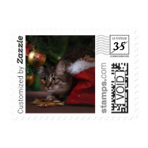 Merry Christmas Pet Cat PhotoStamp by Stamps.com