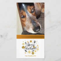 Merry Christmas Pet Photo Black Gold Holiday Card