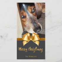 Merry Christmas Pet Photo Chalkboard Gold Bow Holiday Card