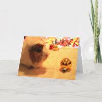 Merry Christmas Pig Holiday Card