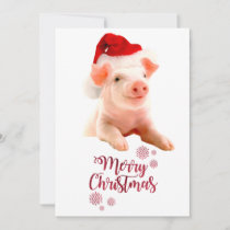 Merry Christmas Pig With Santa Hat Holiday Card