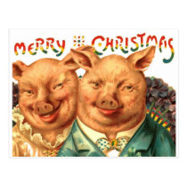 Merry Christmas Pigs Vintage Postcard Art