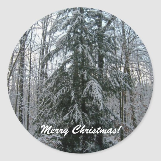 Merry Christmas!-Pine Tree Stickers