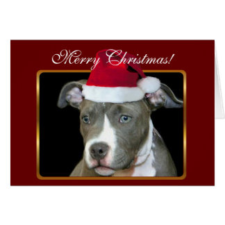 Merry Christmas pitbull puppy greeting card