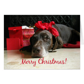 merry christmas  pointer and gifts at fireplace greeting card