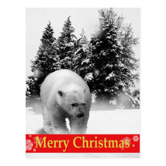 Merry Christmas Polar Bear! Postcard
