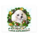 Merry Christmas Poodle Postcard