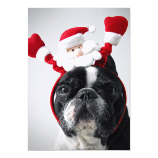Merry Christmas portrait offrench bulldog Card