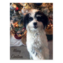 Merry Christmas Postcard K-Cee cute dog, orniments