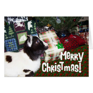 Merry Christmas Presents with Goat Rufus Card
