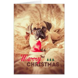 Merry Christmas Pug Card