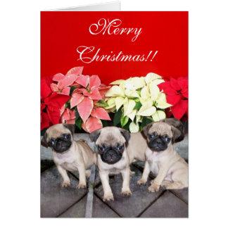 Merry Christmas pug puppies greeting card