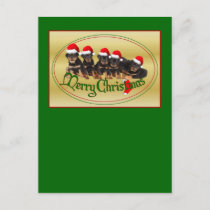 Merry Christmas Rottweiler Puppies Holiday Postcard