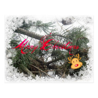 Merry Christmas Rudolph Postcard
