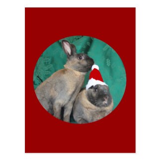 Merry Christmas Santa Bunnies Happy New Year too Postcard