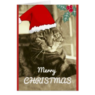 Merry Christmas Sepia Cat Old Photo Vintage Card