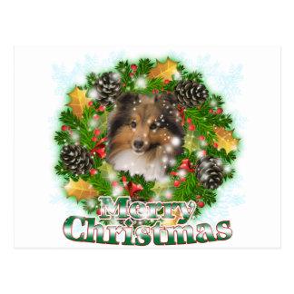 Merry Christmas Sheltie Postcard