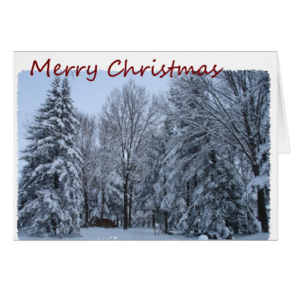 Merry Christmas, Snow In Trees Card