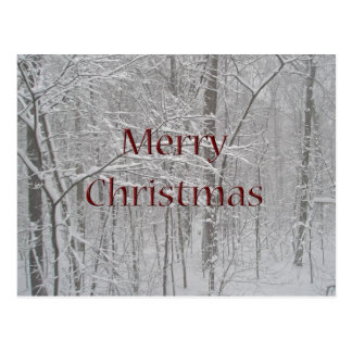 Merry Christmas Snow Storm Coordinating Items Postcard