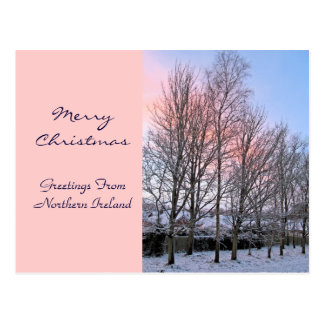 Merry Christmas - Snowy Trees Postcard