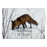 Merry Christmas Son-Fox in Snow Greeting Card