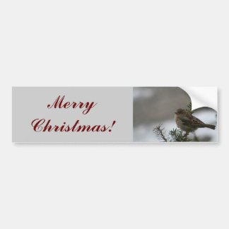 Merry Christmas Sparrow! Bumper Sticker