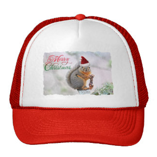 Merry Christmas Squirrel Hat
