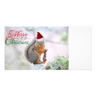 Merry Christmas Squirrel Customized Photo Card
