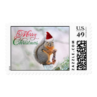 Merry Christmas Squirrel Stamp