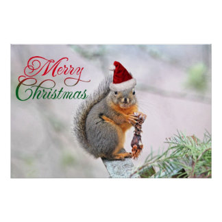 Merry Christmas Squirrel Poster