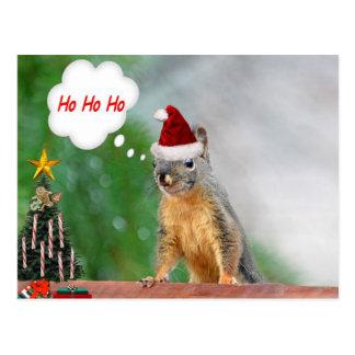 Merry Christmas Squirrel Saying Ho Ho Ho! Postcard