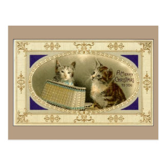 Merry Christmas To You Vintage Cats Postcard Brown