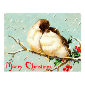 Merry Christmas Vintage Birds Postcard