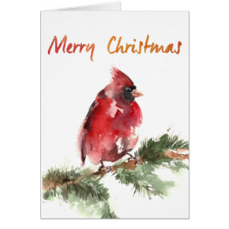 merry christmas watercolor red cardinal stationery note card