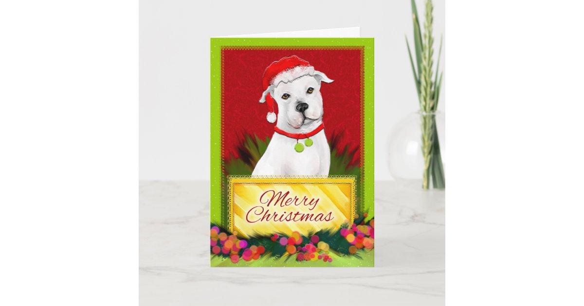 Merry Christmas White Pitbull Christmas Card | Zazzle.com
