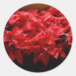 Merry Christmas, Yall! Poinsettias Round Sticker