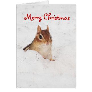 Merry Christnas Little Snowy Chipmunk Card