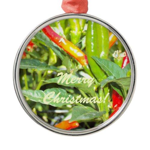 Merry Chritmas Chilli Pepper Ornament ornament