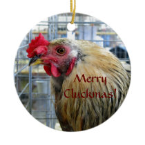 "Merry ""Cluckmas"" Show Chicken Ornament"
