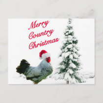 Merry Country Christmas Chicken With Santa Hat Holiday Postcard