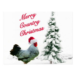 Merry Country Christmas Chicken With Santa Hat Postcard